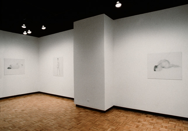 Bill Jacobson - Recent Photographs from the Interim Series (solo exhibition)